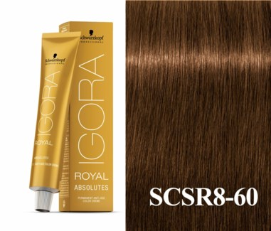 8-60 Light Blonde Chocolate ABSOLUTE