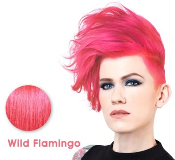 SPARKS WILD FLAMINGO LL HAIR COLOR